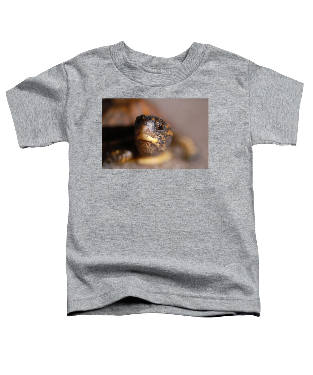 Clay Toddler T-Shirt featuring the photograph Lucky by Clayton Bruster