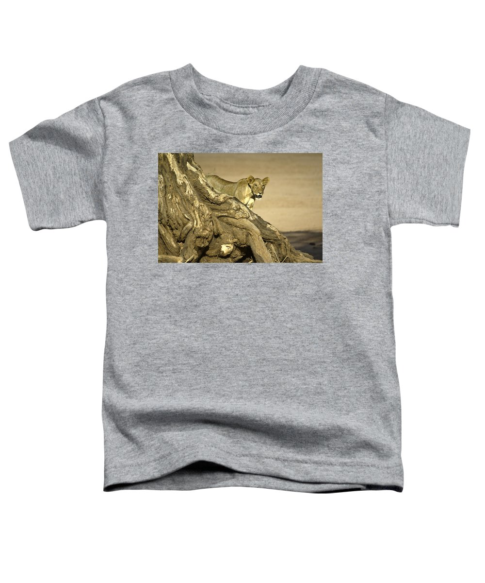 Africa Toddler T-Shirt featuring the photograph Peeking Out by Michele Burgess