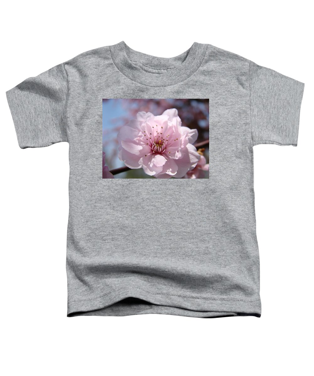 �blossoms Artwork� Toddler T-Shirt featuring the photograph Pink Blossom Nature Art Prints 34 Tree Blossoms Spring Nature Art by Baslee Troutman