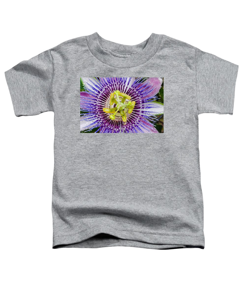 Passion Toddler T-Shirt featuring the photograph Purple Radial by Christopher Holmes