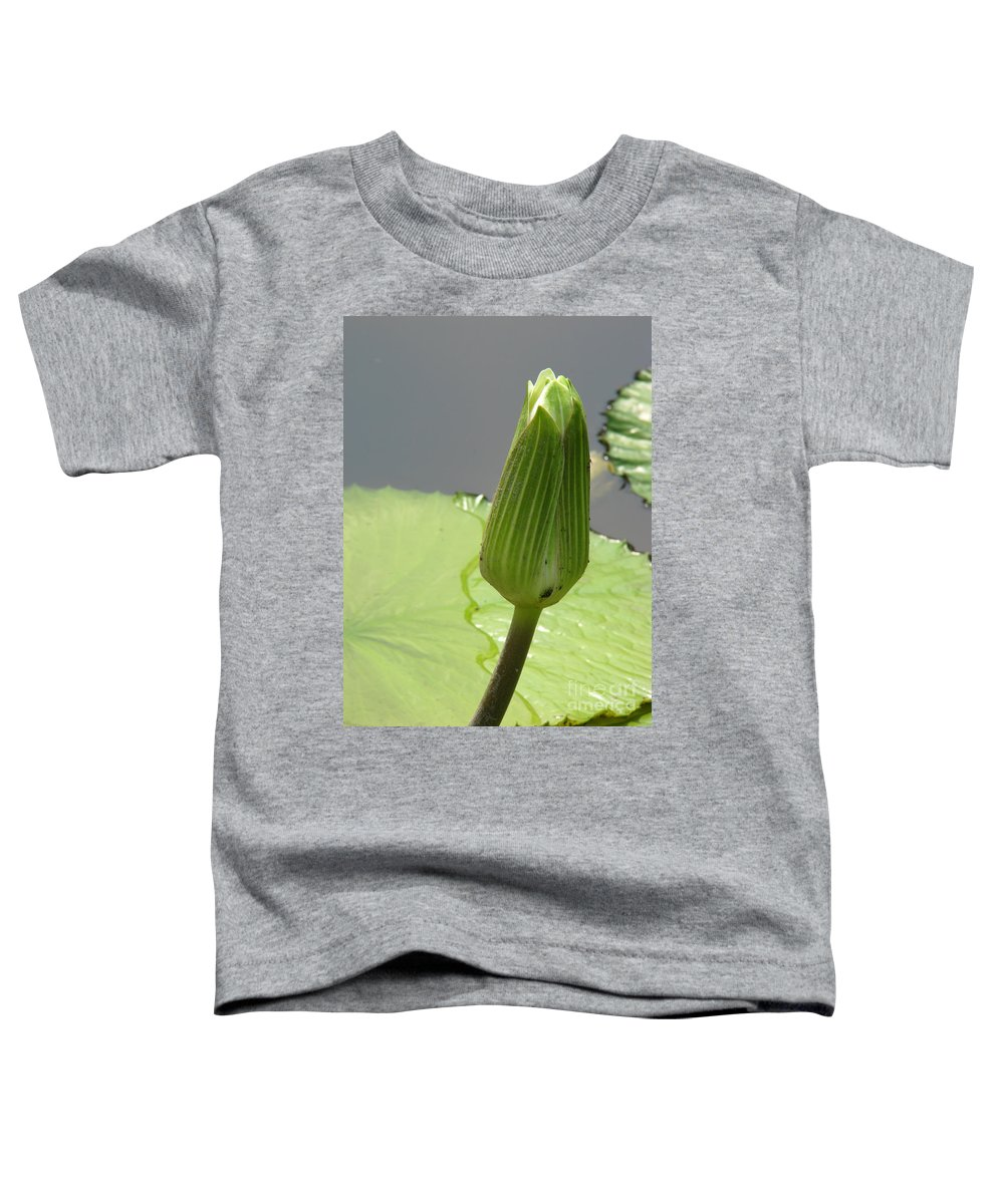 Lilly Toddler T-Shirt featuring the photograph Ready To Bloom by Amanda Barcon