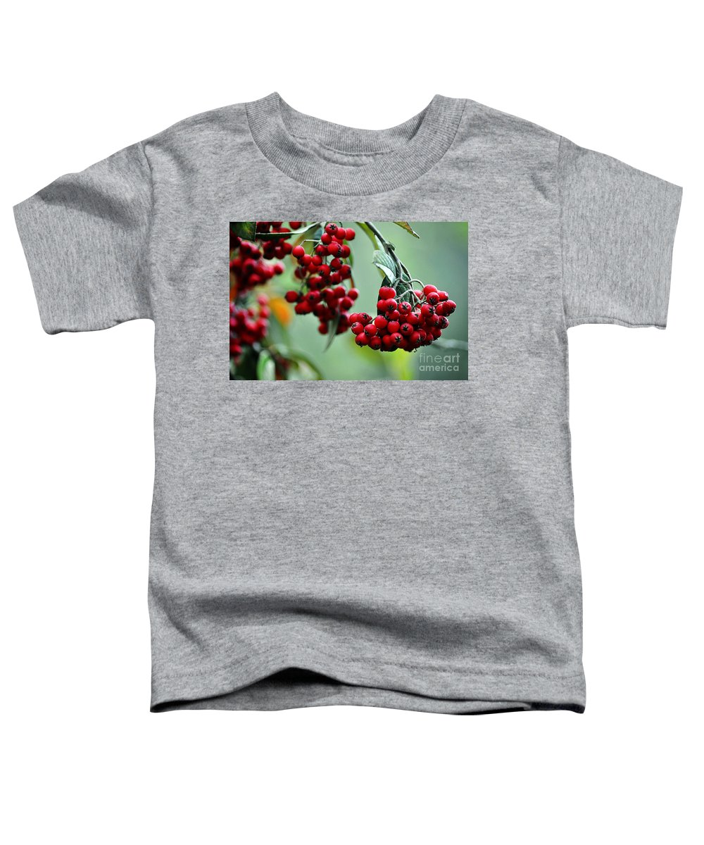 Clay Toddler T-Shirt featuring the photograph Red Berries by Clayton Bruster