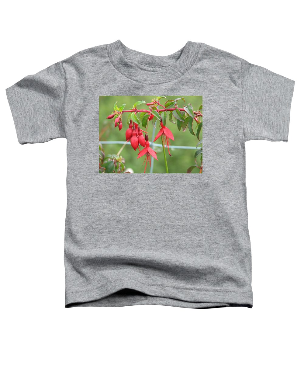 Fresia Toddler T-Shirt featuring the photograph Red Fresia by Kelly Mezzapelle