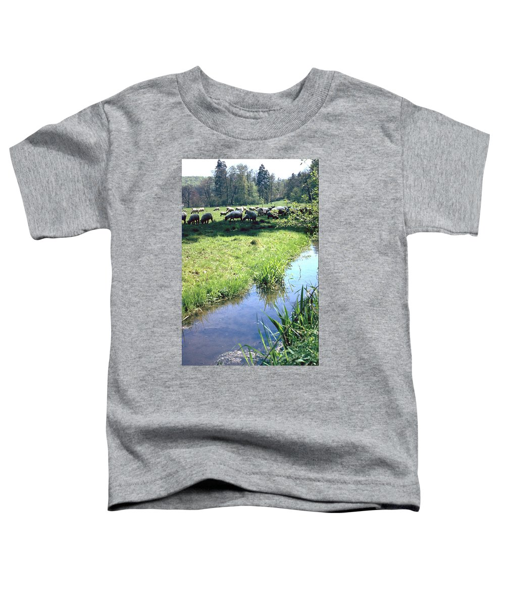 Sheep Toddler T-Shirt featuring the photograph Sheep by Flavia Westerwelle