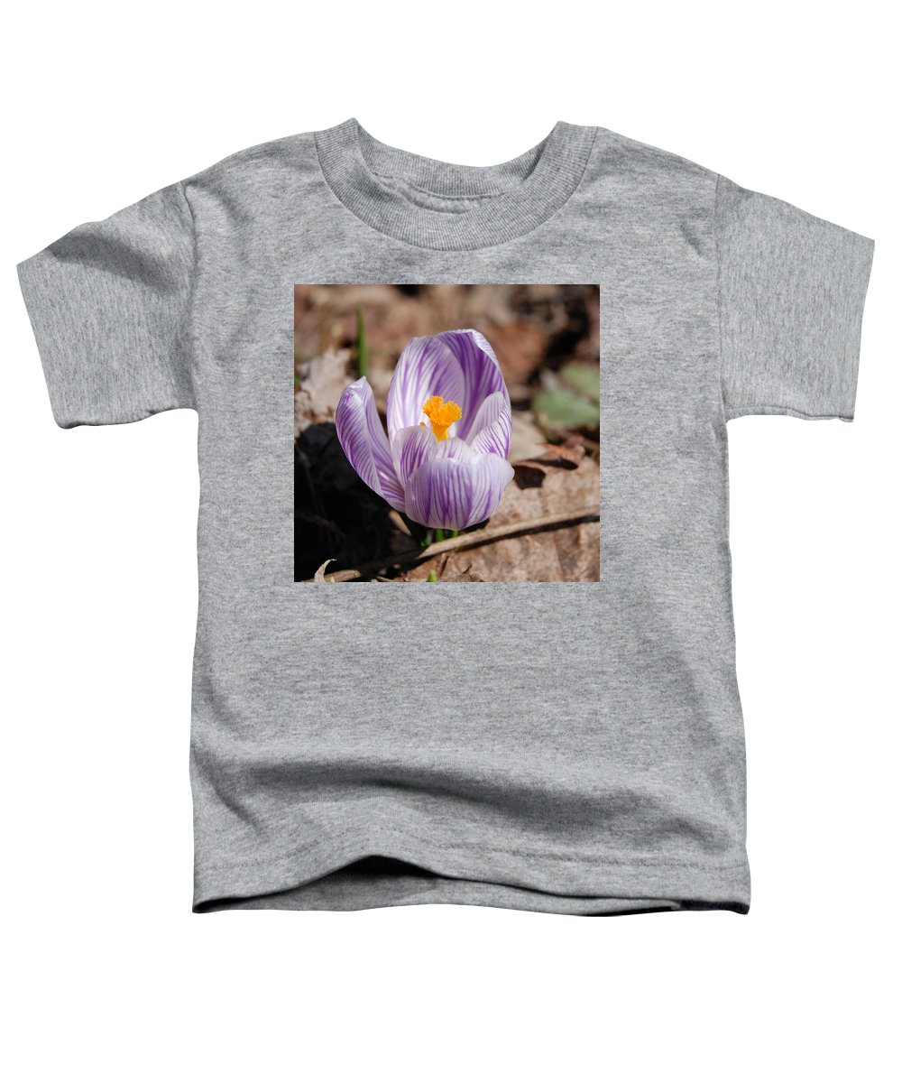 Digital Photography Toddler T-Shirt featuring the photograph Striped Crocus by David Lane