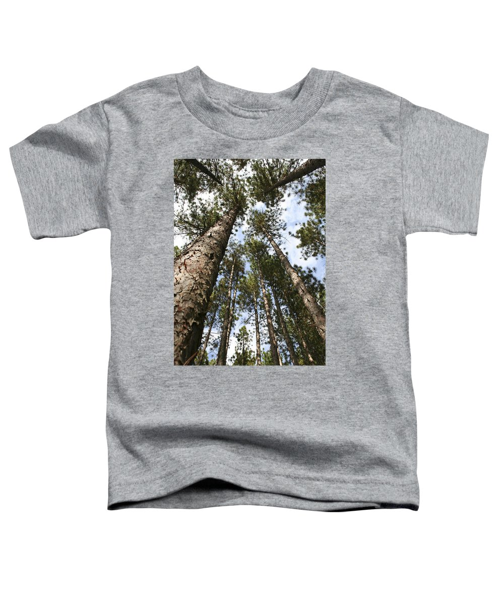Autumn Toddler T-Shirt featuring the photograph Tree Stand by Margie Wildblood