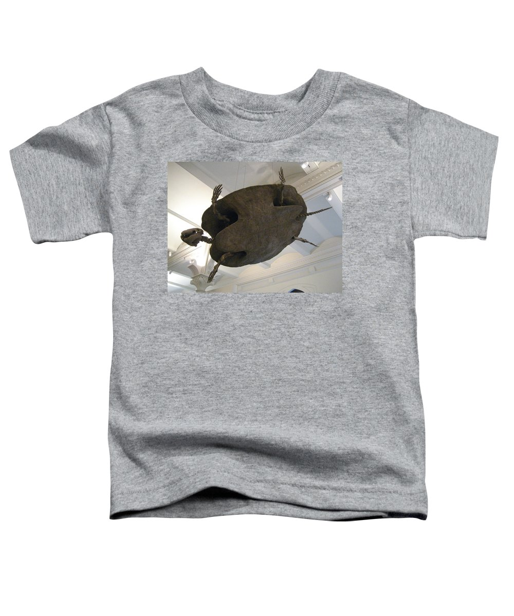 Turtle Toddler T-Shirt featuring the photograph Turtle by Brian McDunn
