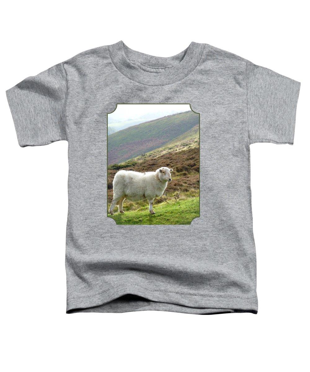 Sheep Pasture Photographs Toddler T-Shirts