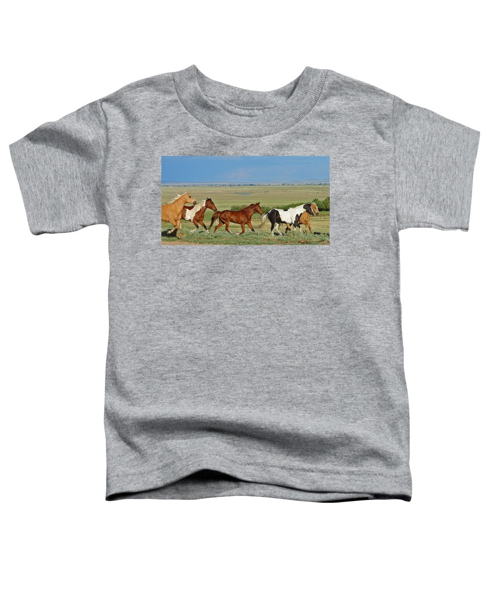 Herd Toddler T-Shirt featuring the photograph Wild Horses Wyoming by Heather Coen
