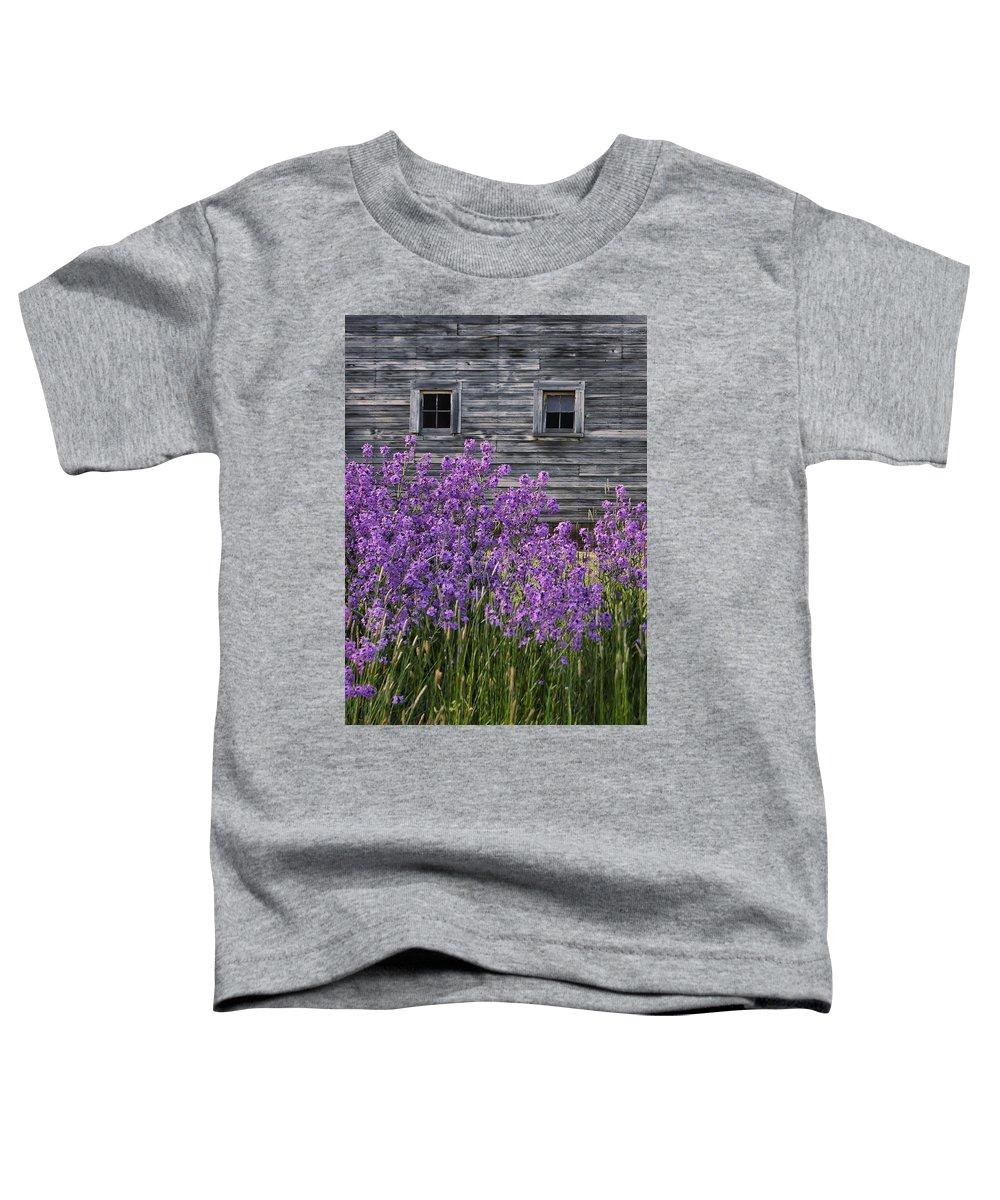 Windows Toddler T-Shirt featuring the photograph Wild Phlox - Windows - Old Barn by Nikolyn McDonald