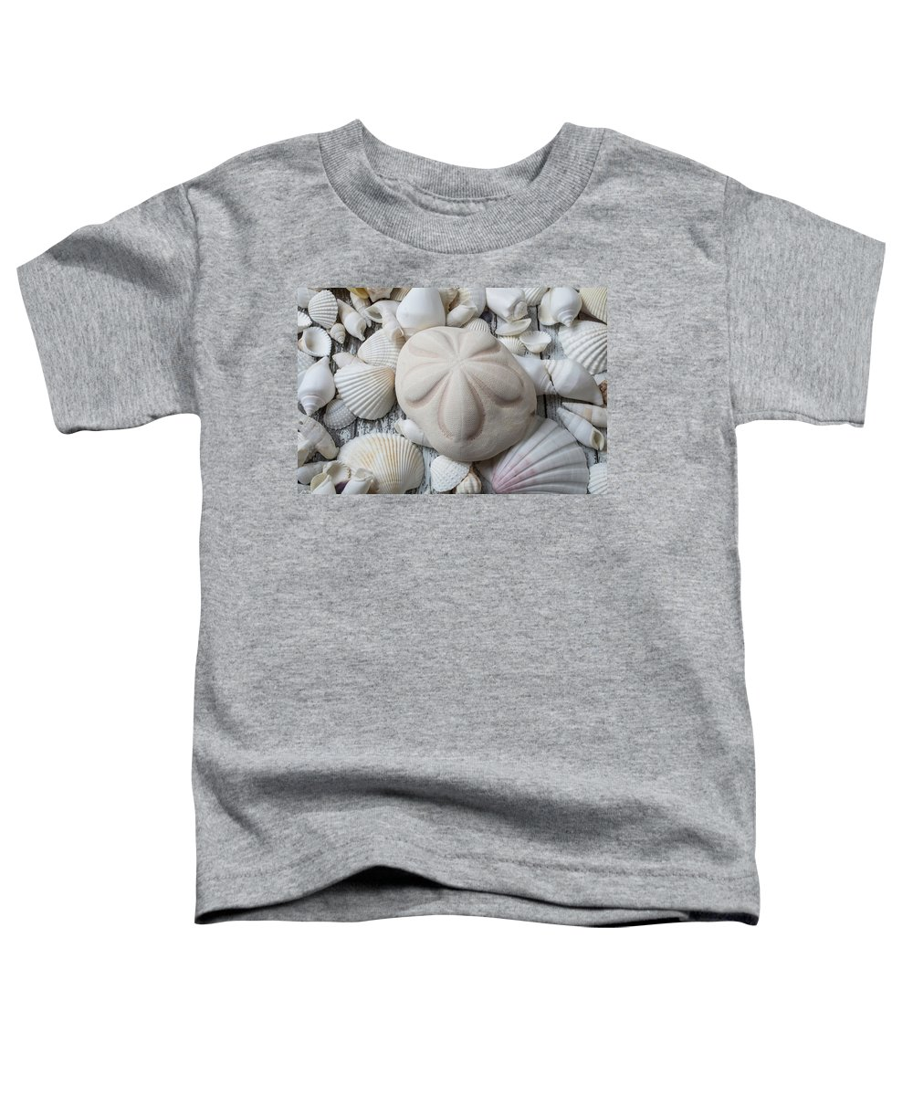 White Toddler T-Shirt featuring the photograph Wonderful Sand Dollar by Garry Gay