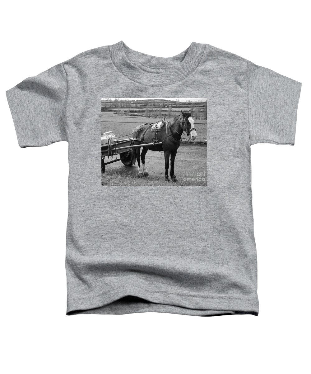 Cart Toddler T-Shirt featuring the photograph Work Horse And Cart by Gaspar Avila