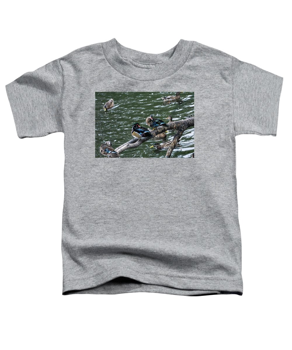 Water Bird Toddler T-Shirts