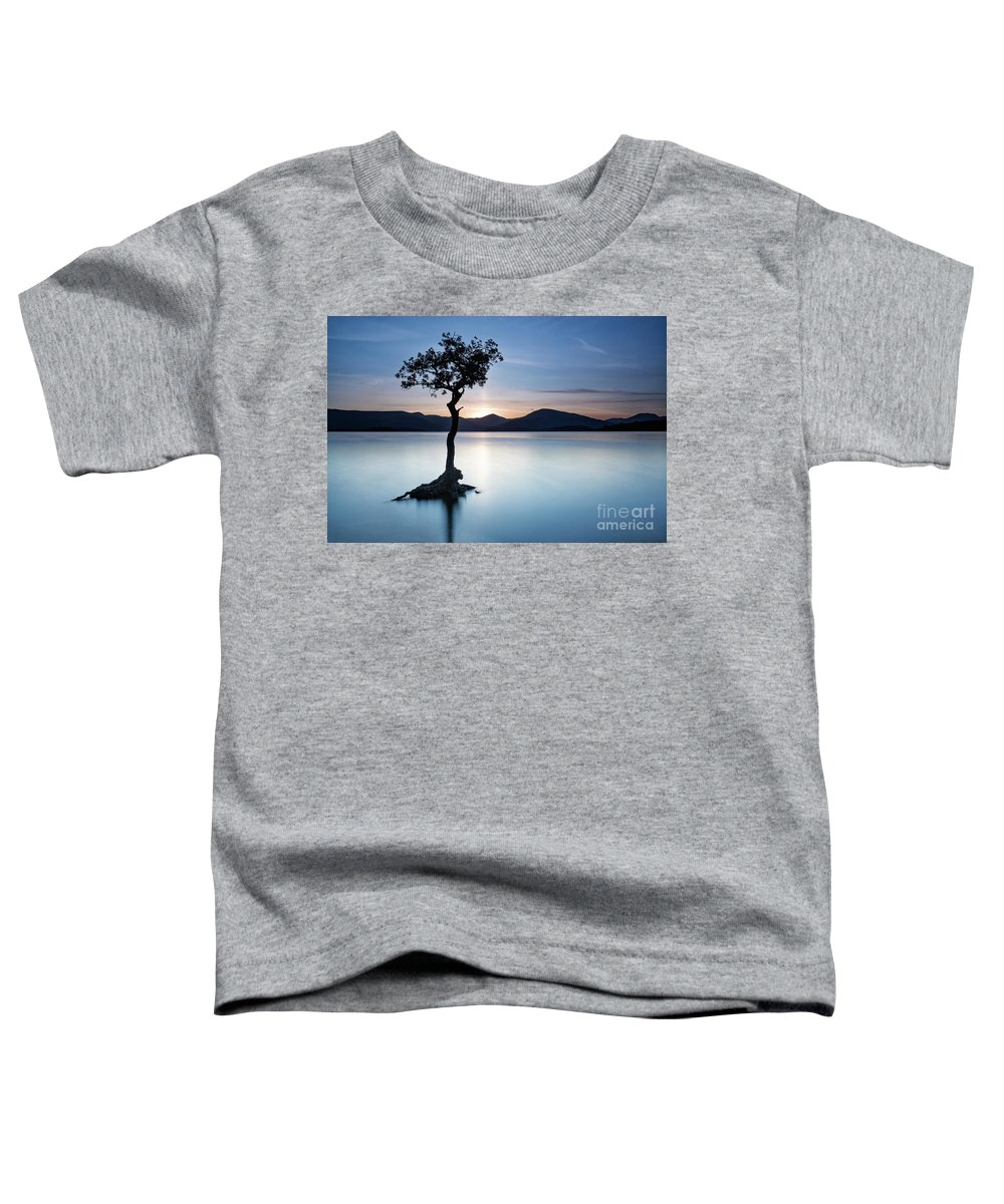 Loch Lomond Toddler T-Shirt featuring the photograph The Lone Tree At Milarrochy by Richard Burdon