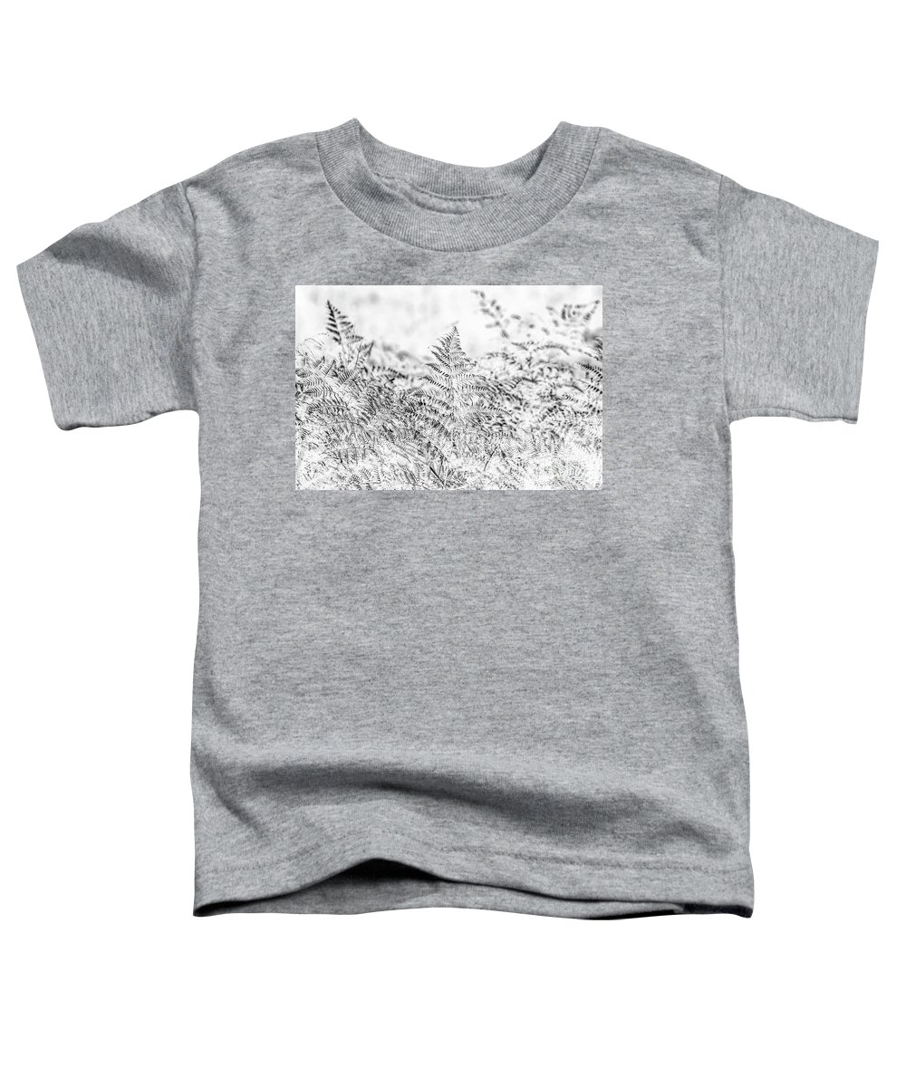 Forest Toddler T-Shirt featuring the photograph Ferny Grove by Jorgo Photography - Wall Art Gallery