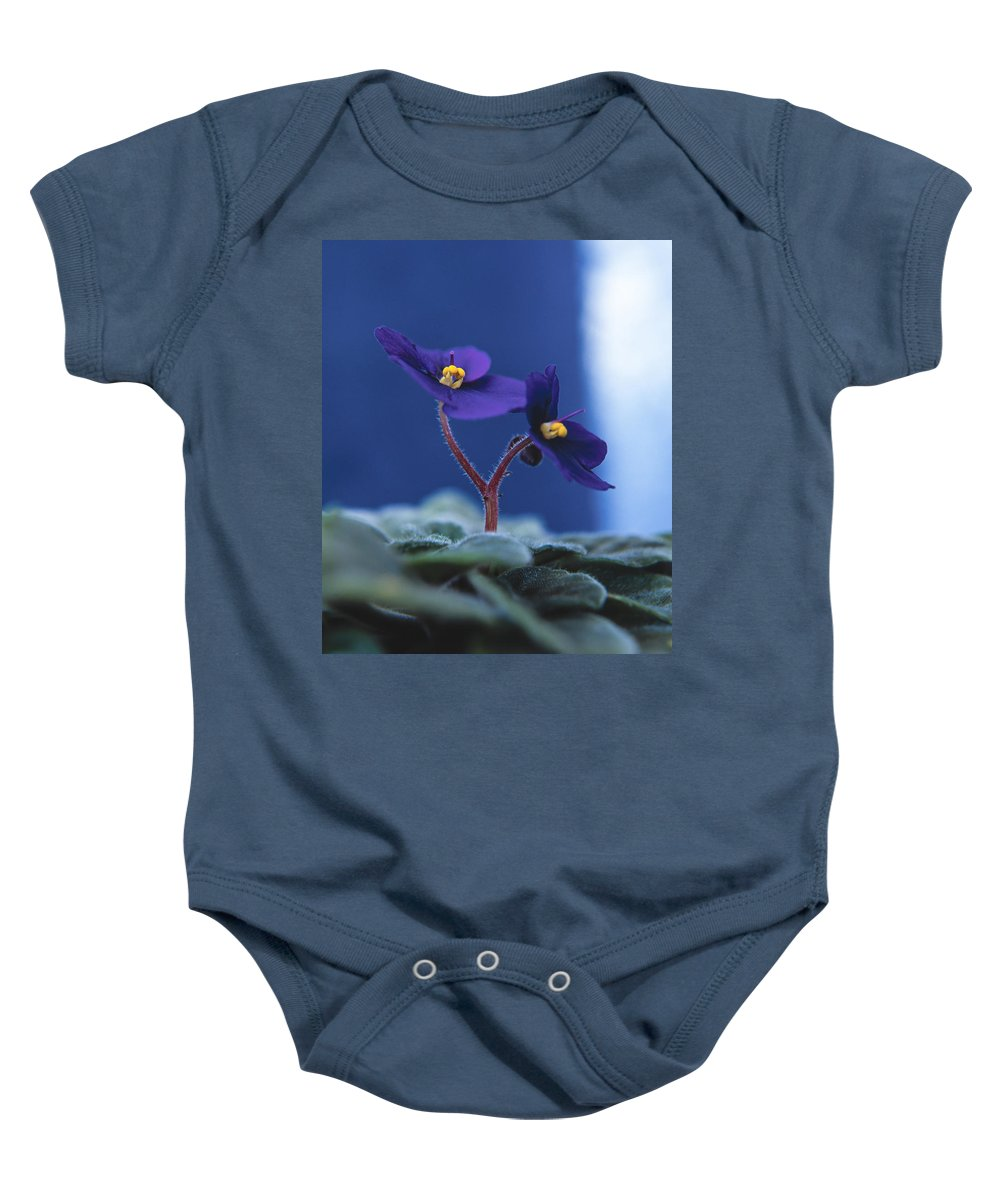 African Violet Baby Onesie featuring the photograph African Violet by Lana Enderle