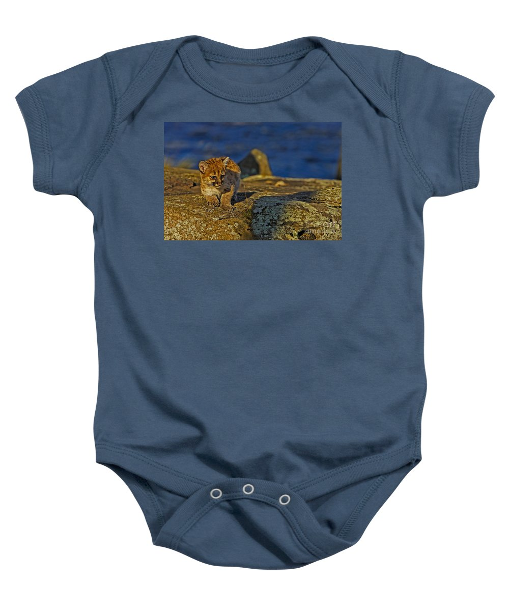 Cougar Baby Onesie featuring the photograph Baby Blues by Jack Milchanowski