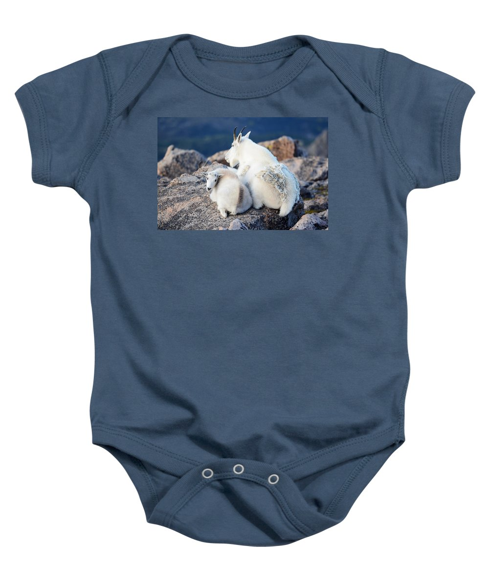 Wildlife Baby Onesie featuring the photograph Rocky Mountain Goat by OLena Art Brand