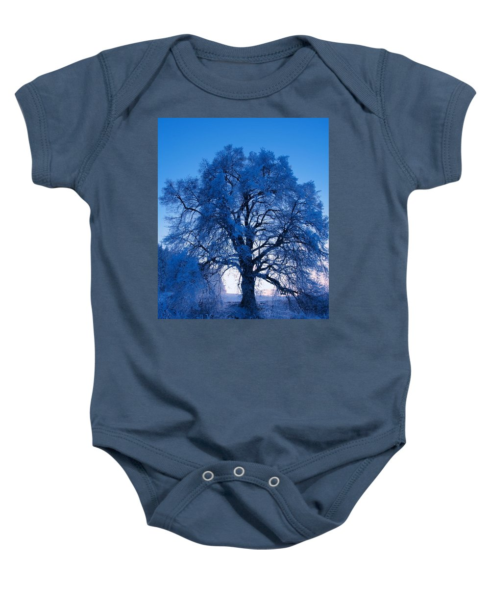 Tree Baby Onesie featuring the photograph Sunrise And Tree by Roman Aj