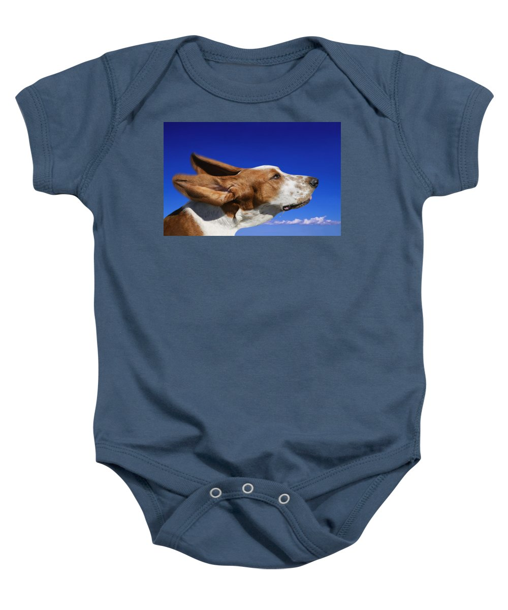 Animal Head Baby Onesie featuring the photograph Dog With Ears In The Wind by Don Hammond