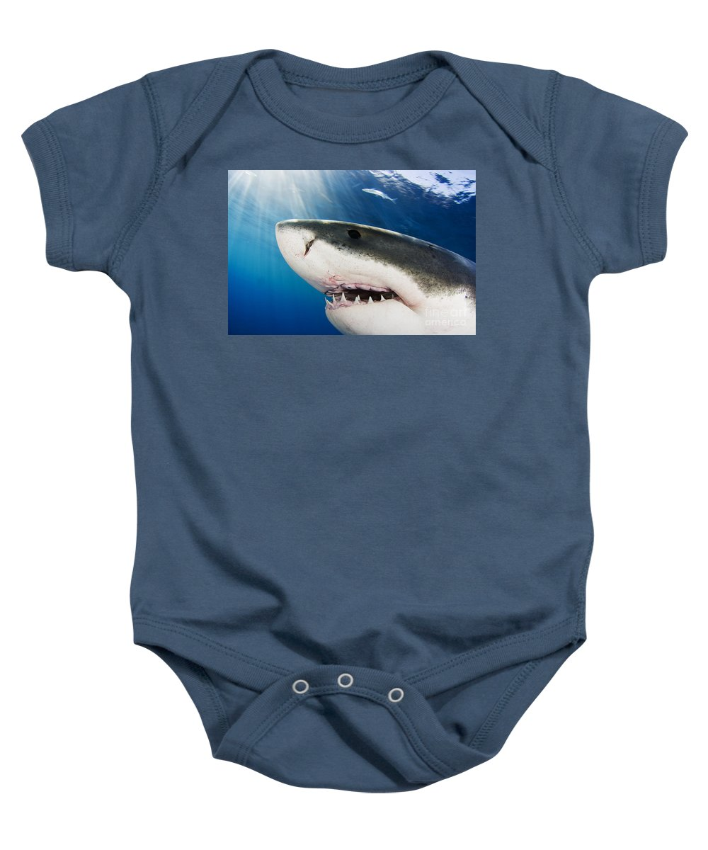 Beautiful Baby Onesie featuring the photograph Great White Shark by Dave Fleetham - Printscapes