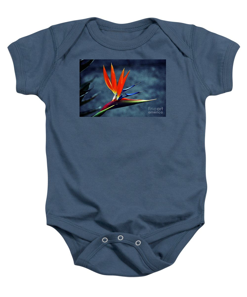 Clay Baby Onesie featuring the photograph Bird Of Paradise by Clayton Bruster