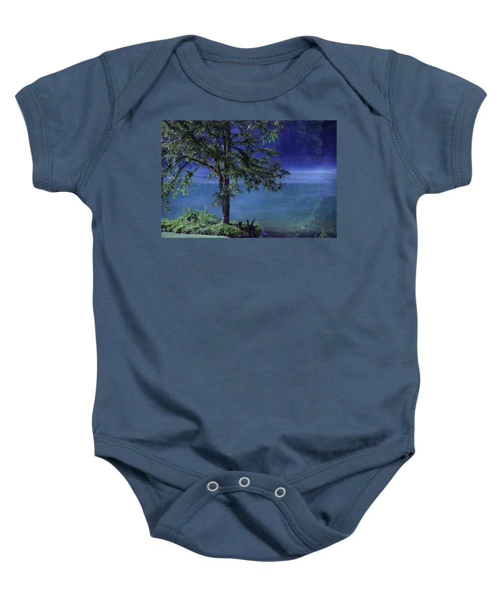 Landscape Baby Onesie featuring the photograph Fog Over The Pond by Susanne Van Hulst