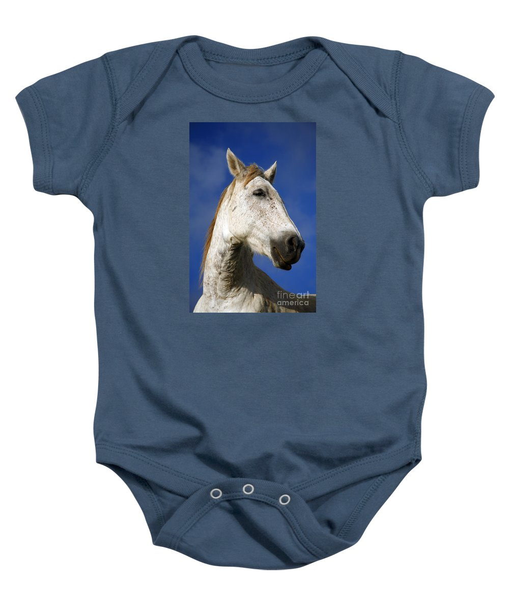 Animals Baby Onesie featuring the photograph Horse Portrait by Gaspar Avila