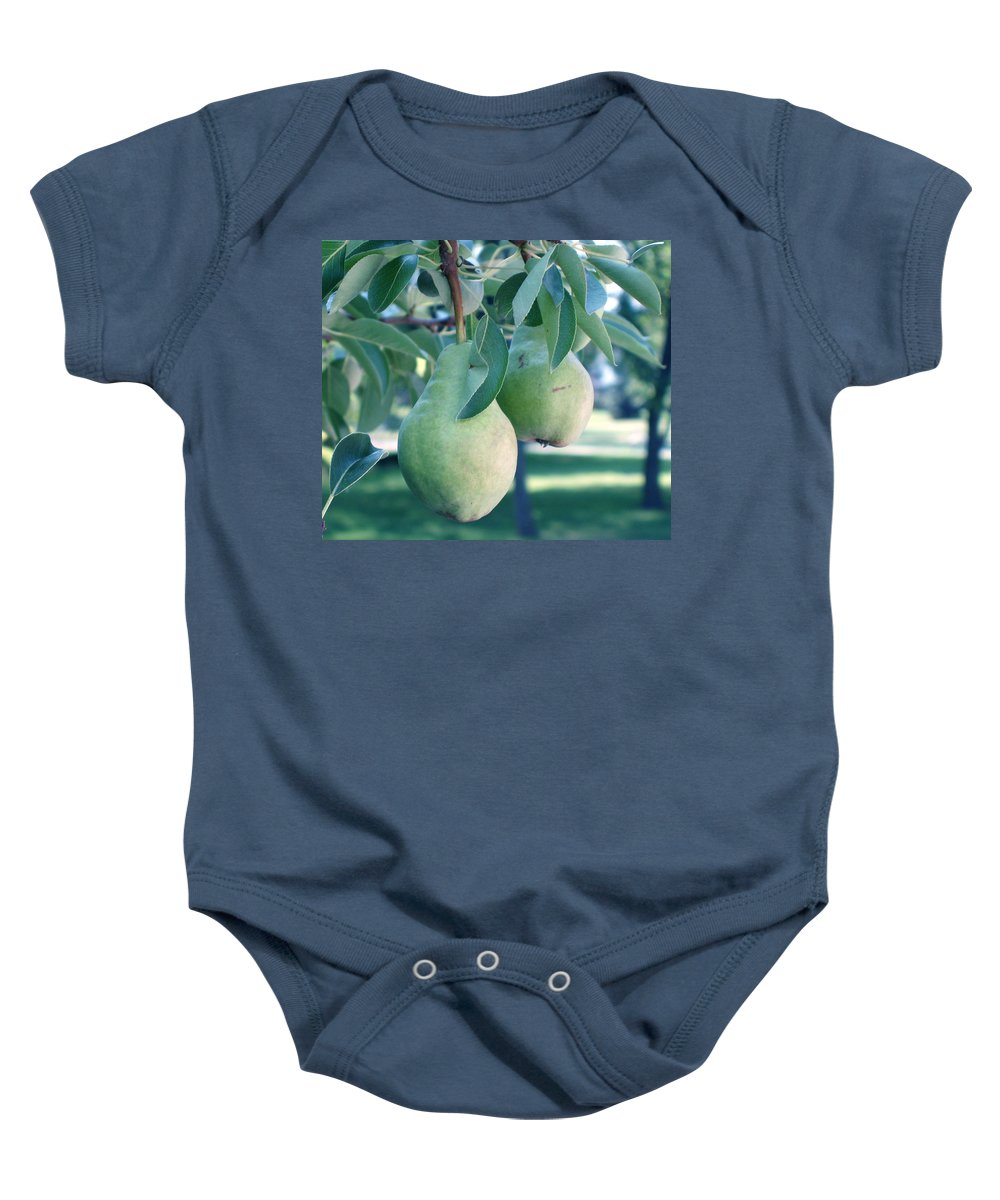 Pears Baby Onesie featuring the painting My Brothers Pear Tree by Wayne Potrafka