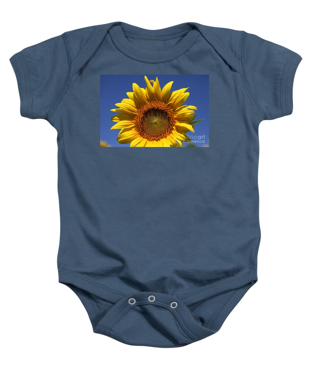 Sunflowers Baby Onesie featuring the photograph Peek A Boo by Amanda Barcon