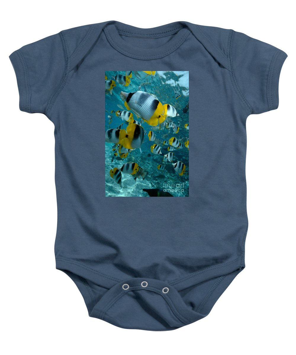 Animal Art Baby Onesie featuring the photograph School Of Butterflyfish by Bob Abraham - Printscapes