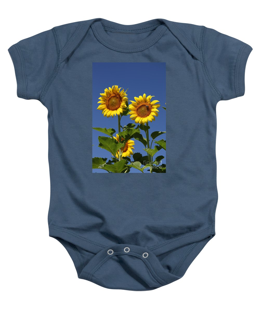 Sunflower Baby Onesie featuring the photograph Viewing The Past by Amanda Barcon