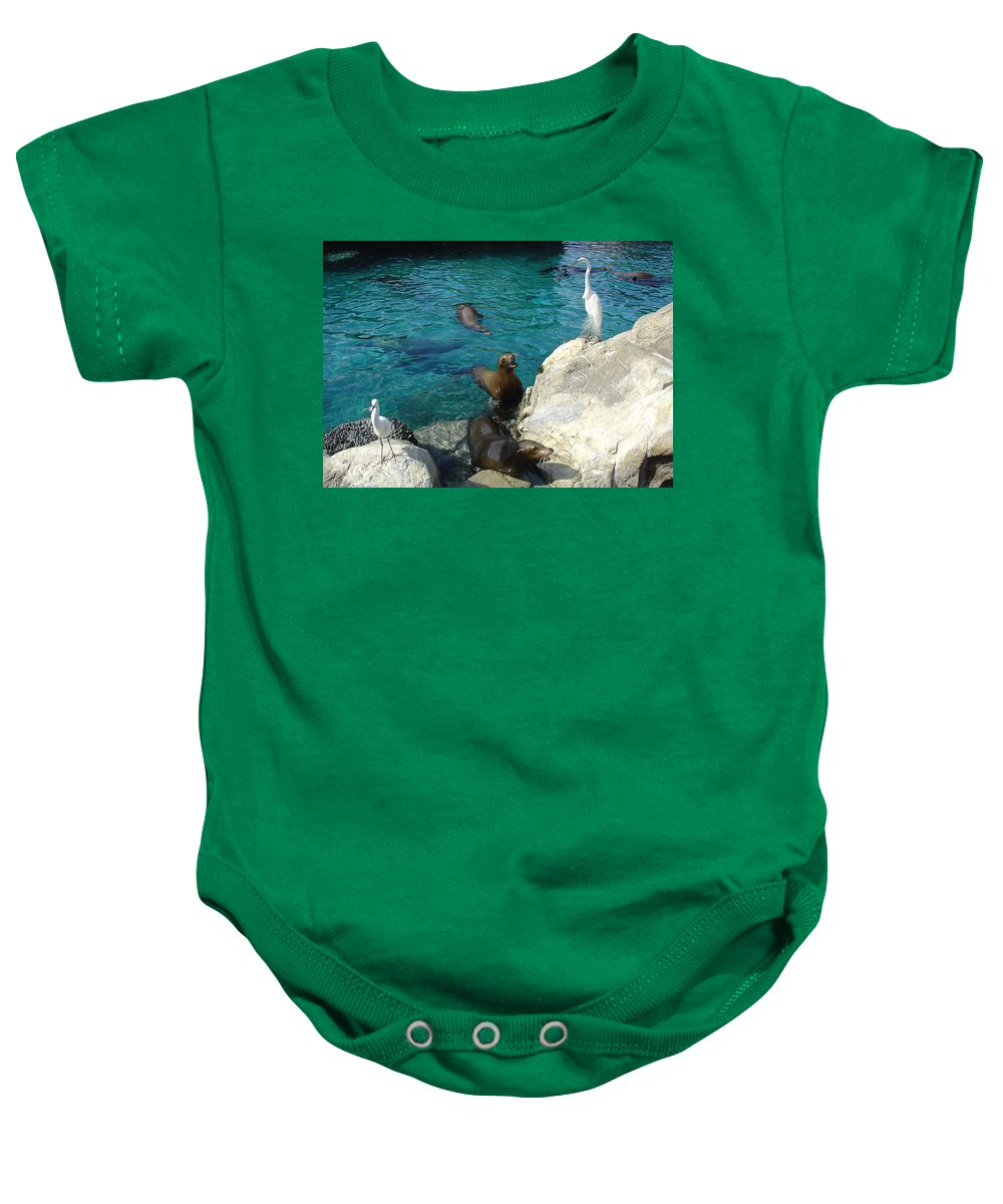 Sea World Baby Onesie featuring the photograph Seaworld Sea Lions by David Nicholls