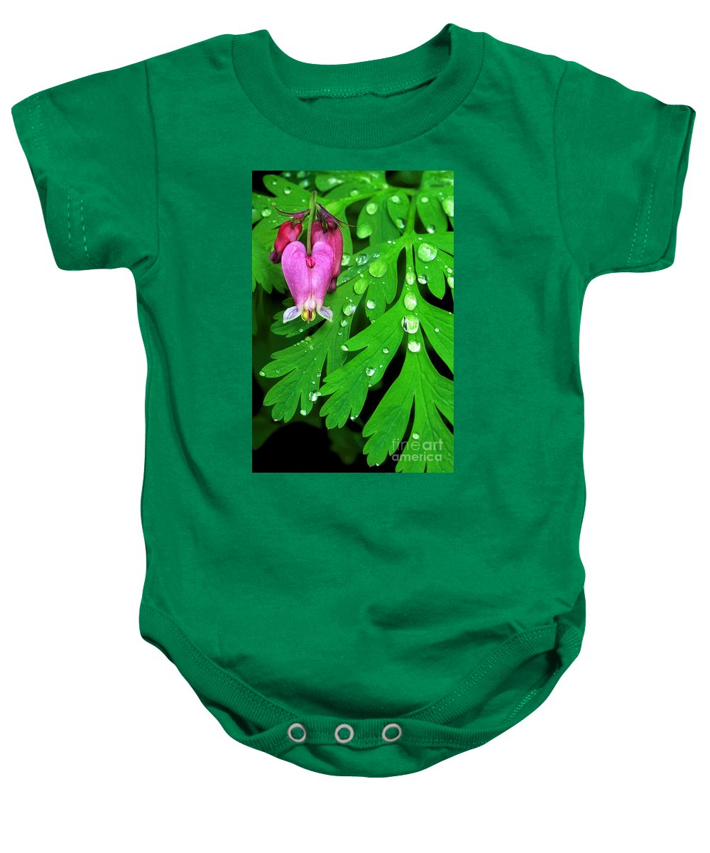 Formosa Bleeding Heart Baby Onesie featuring the photograph Formosa Bleeding Heart On Ferns by Dave Welling