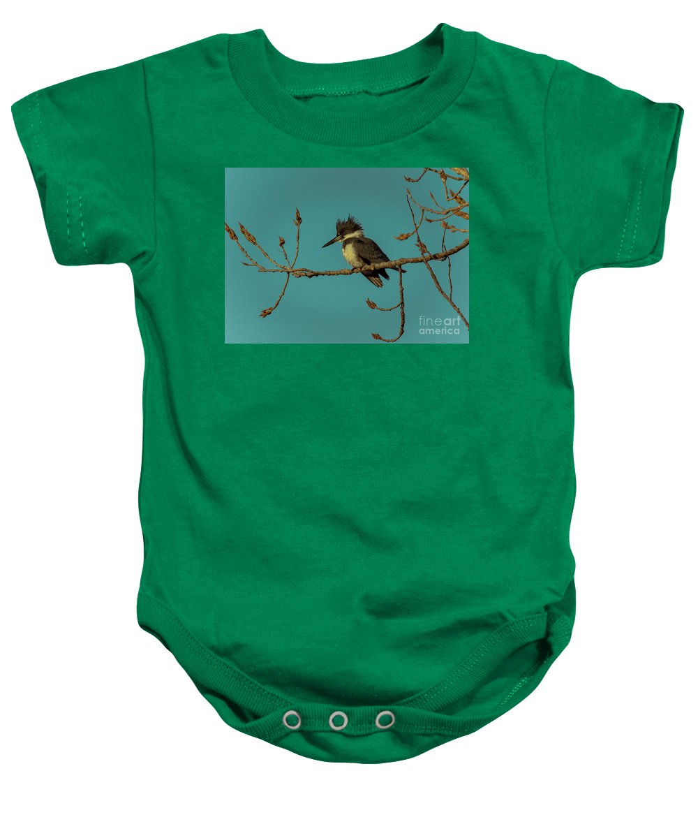 Animal Baby Onesie featuring the photograph Kingfisher On Limb by Robert Frederick