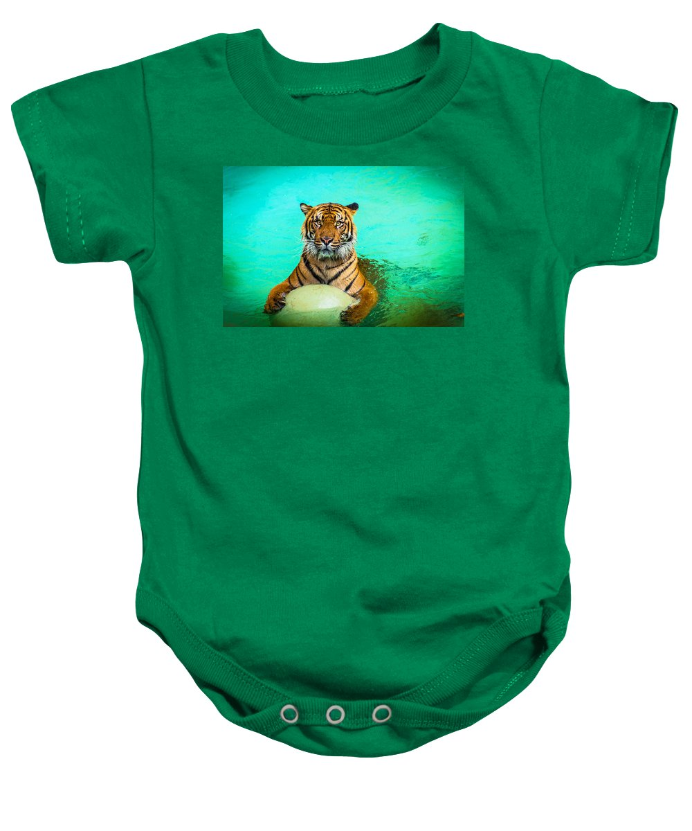 Cat Baby Onesie featuring the photograph One Kool Cat by Lynn Bauer