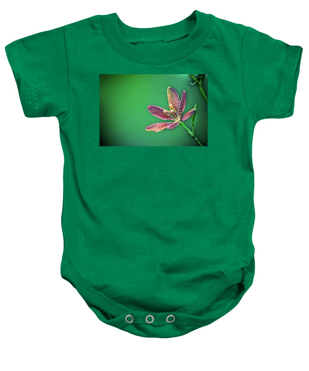 Flower Petals Baby Onesie featuring the photograph Prisma by Sarah Wiggins