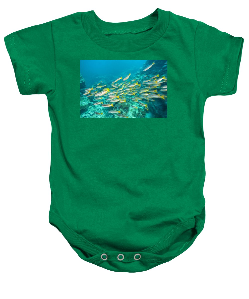 Andaman Sea Baby Onesie featuring the photograph Schooling Bigeye Snappers by Stuart Westmorland
