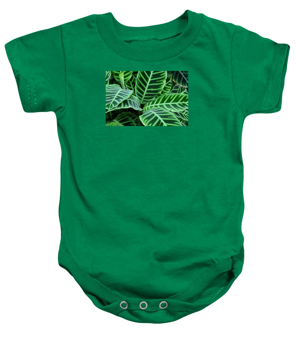 Hosta Baby Onesie featuring the photograph Heart Strings by Michiale Schneider