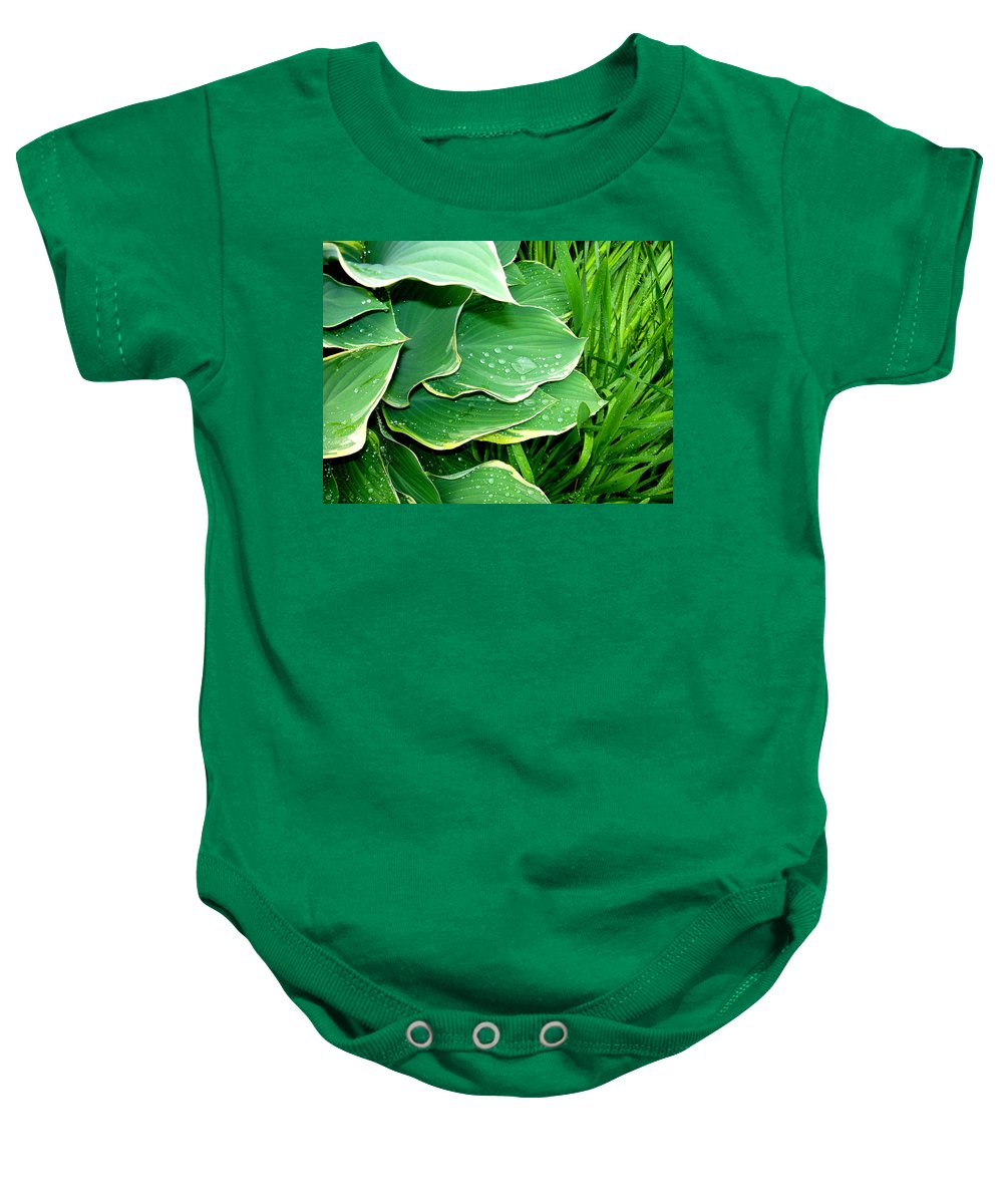 Hostas Baby Onesie featuring the photograph Hosta Leaves And Waterdrops by Nancy Mueller