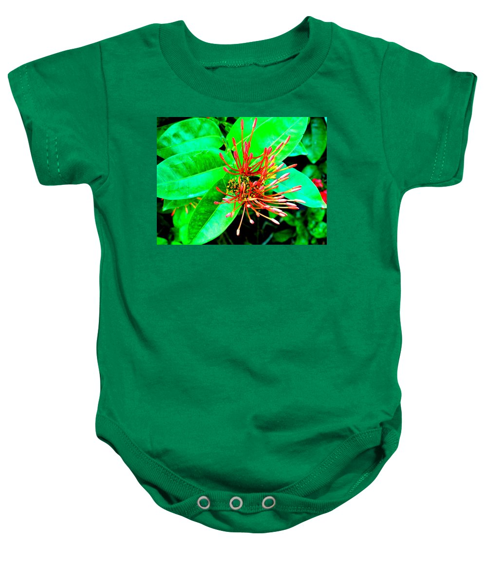 Flower Baby Onesie featuring the photograph In My Garden by Ian MacDonald