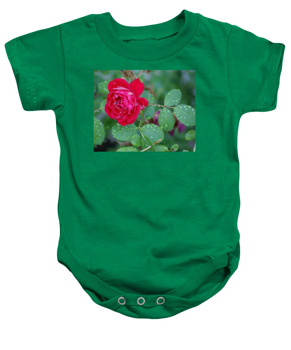Flowers Baby Onesie featuring the photograph Morning Dew On A Rose by Ben Upham III