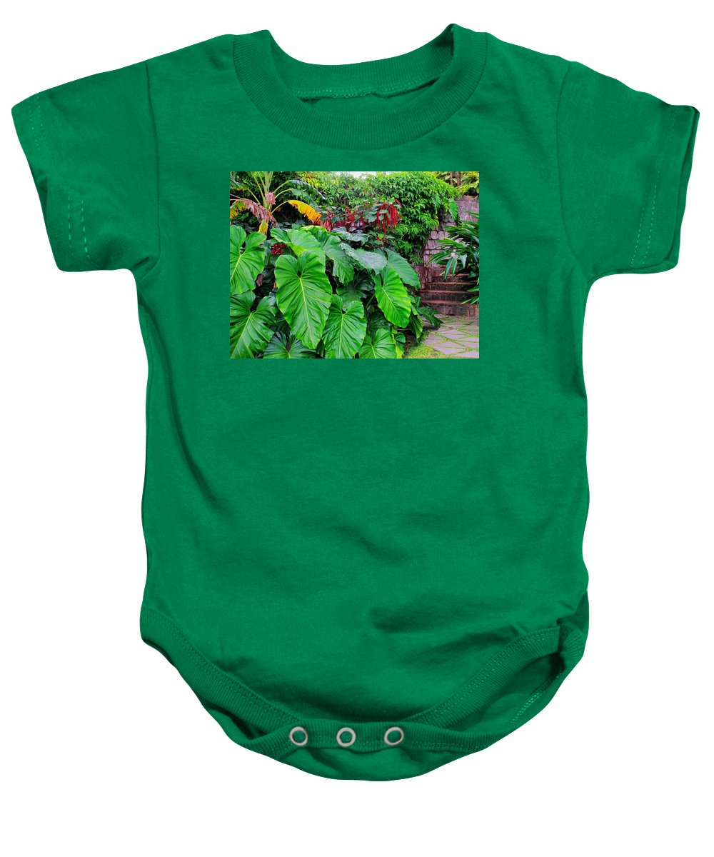 Lush Baby Onesie featuring the photograph Romney Steps by Ian MacDonald