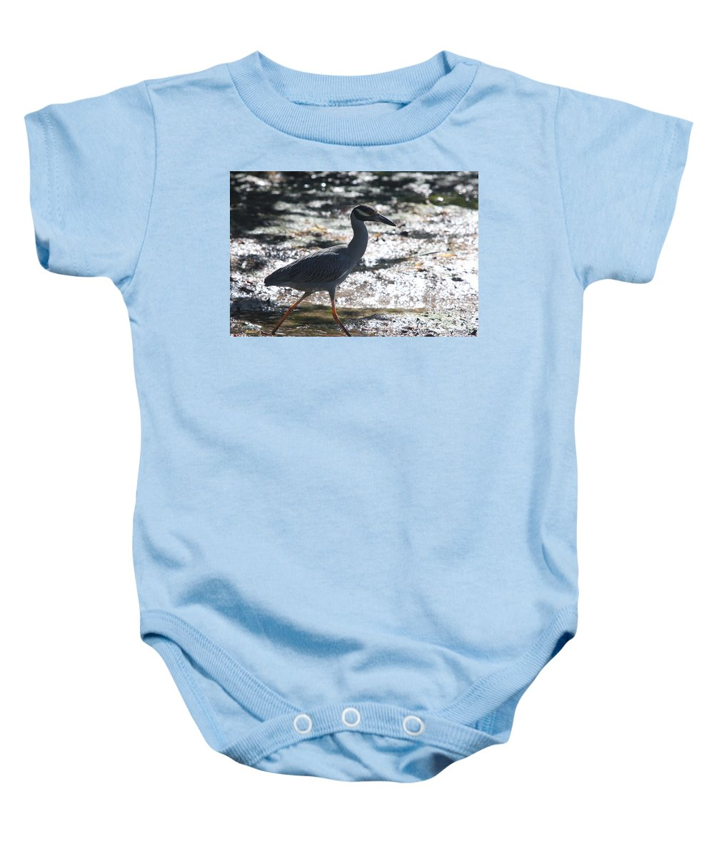 Night-heron Baby Onesie featuring the photograph Black-crowned Night-heron by Christiane Schulze Art And Photography