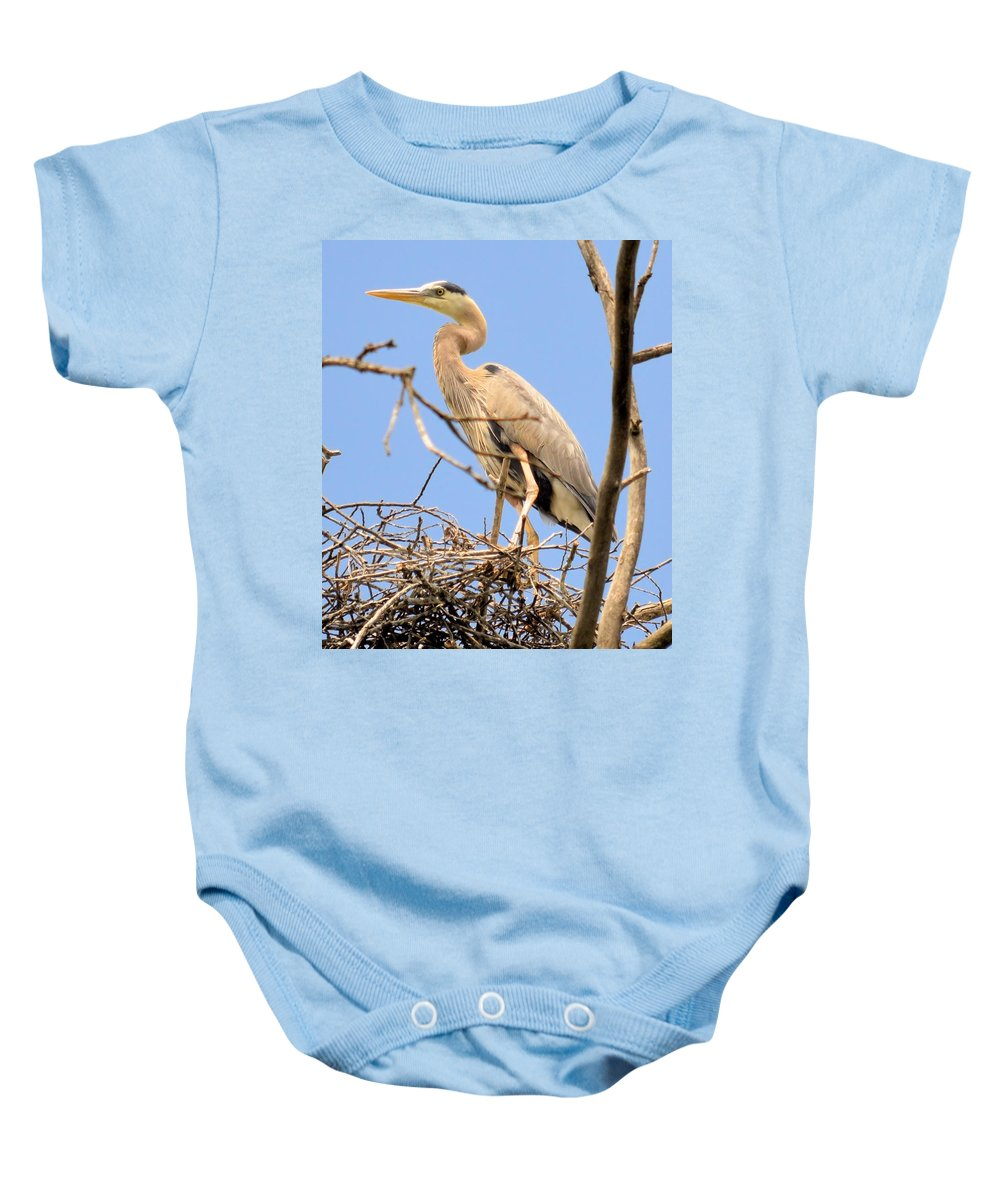 Blue Heron Baby Onesie featuring the photograph Blue Heron Rookery 7231 by Bonfire Photography