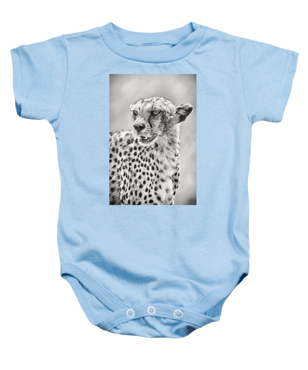 3scape Photos Baby Onesie featuring the photograph Cheetah by Adam Romanowicz
