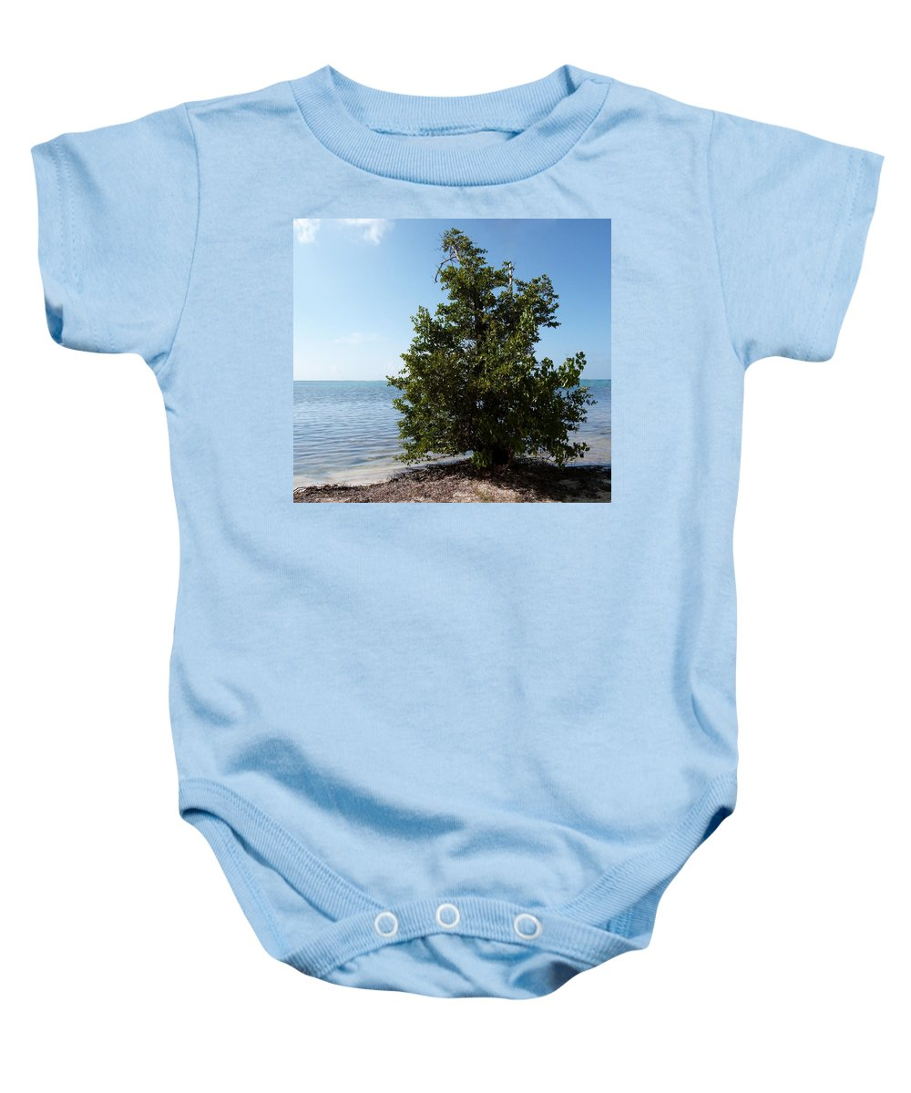Color Baby Onesie featuring the photograph Sentinel by Amar Sheow