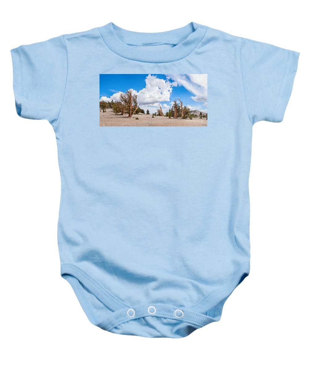 Ancient Bristlecone Pine Forest Baby Onesie featuring the photograph Ancient Panorama - Bristlecone Pine Forest by Jamie Pham