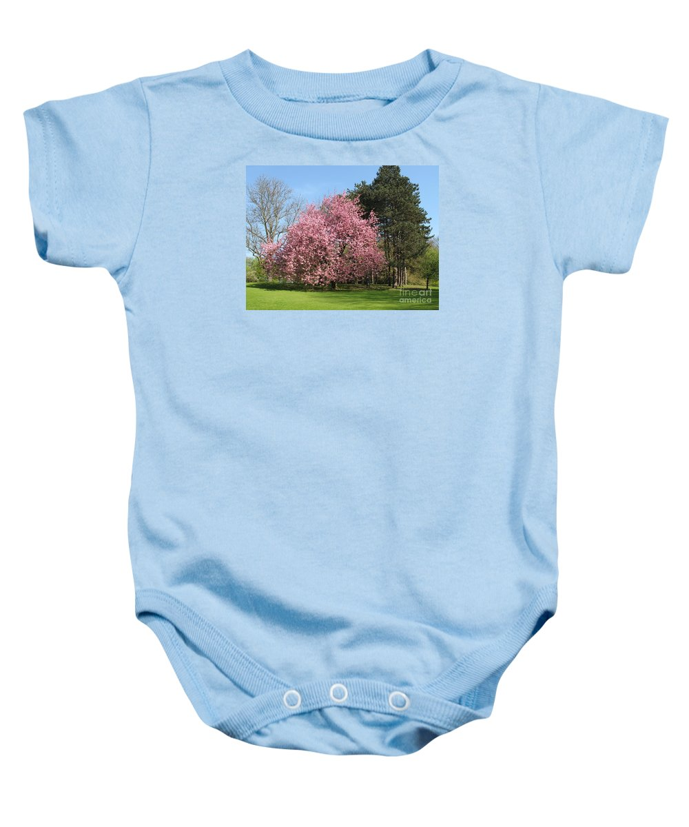 Cherry Tree Baby Onesie featuring the photograph Cherry Tree by Christiane Schulze Art And Photography