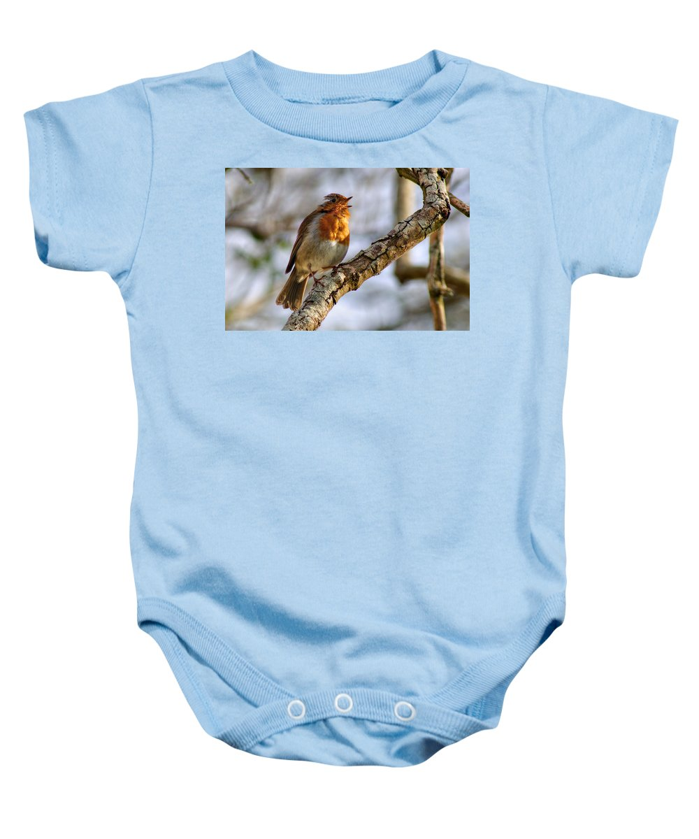 Robin Baby Onesie featuring the photograph Robin by Chris Day